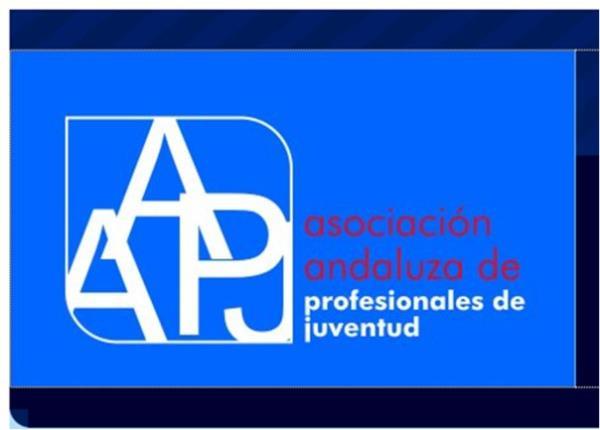 Profesionales de Juventud se reúnen con el Instituto Andaluz de la Juventud